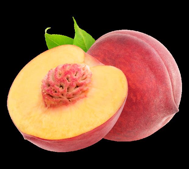 peach palmer